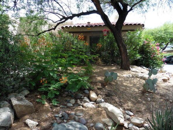 7601 N. Calle Sin Envidia, Tucson, AZ 85718 Photo 15