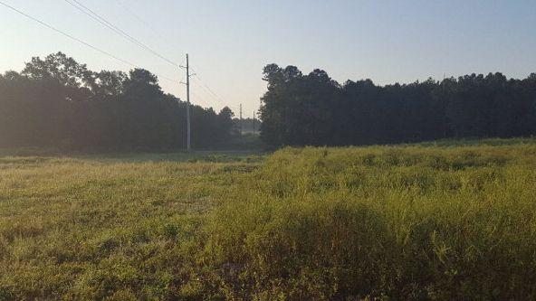 Lot2 Tbd County Rd. 40, Coffee Springs, AL 36318 Photo 2
