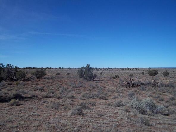 5301 S. Lariat Rd., Williams, AZ 86046 Photo 8