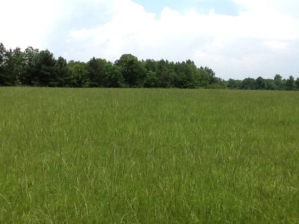 1423 County Rd. 2276, Glenwood, AL 36034 Photo 3