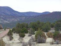Home for sale: 000 County Rd. 2170, Nutrioso, AZ 85932