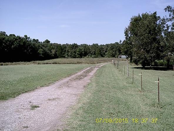 432 Cr 3355, Clarksville, AR 72830 Photo 8