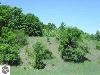 Home for sale: 5 E. Rolling Hills Dr., Traverse City, MI 49684