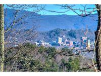 Home for sale: 0000 Chimney Crest Dr., Asheville, NC 28806