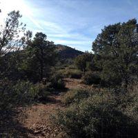 Home for sale: 14450 N. Brenda Rd., Prescott, AZ 86305