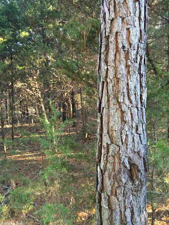 7283 E. Hwy. 62/412, Glencoe, AR 72539 Photo 15