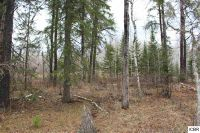 Home for sale: Tbd Connors Rd., Hibbing, MN 55746