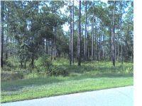 Home for sale: 6328 Riverhouse Dr., Panama City Beach, FL 32413