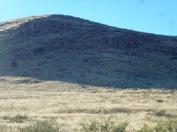 42 Ac S. Ghost Rider Rd., Portal, AZ 85632 Photo 9