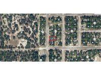 Home for sale: 10535 N. Spaulding Dr., Citrus Springs, FL 34433