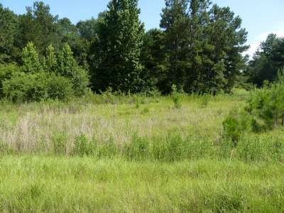 Cedar Ln. Lot#33, Summit, MS 39666 Photo 9