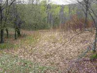Home for sale: Lot #3 Wilder Rd., Duxbury, VT 05676