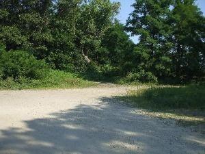 305 Essex Way, Essex, IL 60935 Photo 5