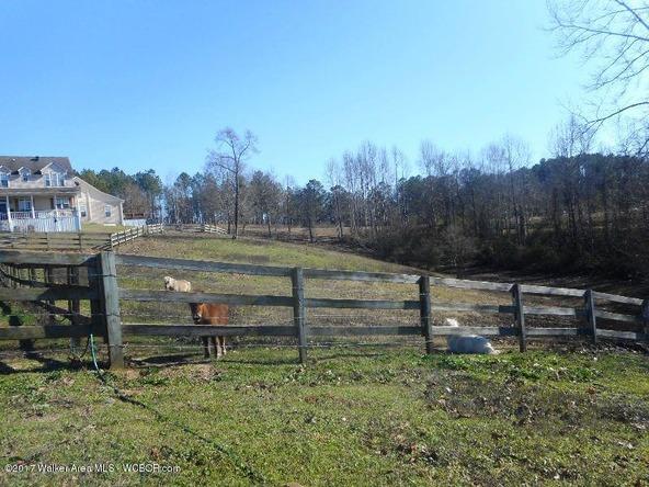 978 Tucker Cemetery Rd., Eldridge, AL 35554 Photo 64