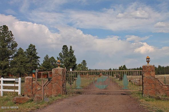 38721 State Route 373, Greer, AZ 85927 Photo 2