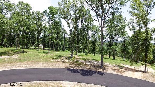 127 Ridgehaven, Hot Springs, AR 71913 Photo 16