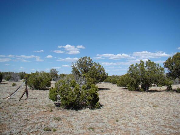 2319 Sitgreaves St., White Mountain Lake, AZ 85912 Photo 18