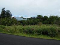 Home for sale: 88 Terrace Cir., Hilo, HI 96720
