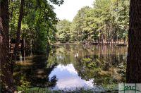 Home for sale: 501 Buckhalter Rd., Savannah, GA 31405
