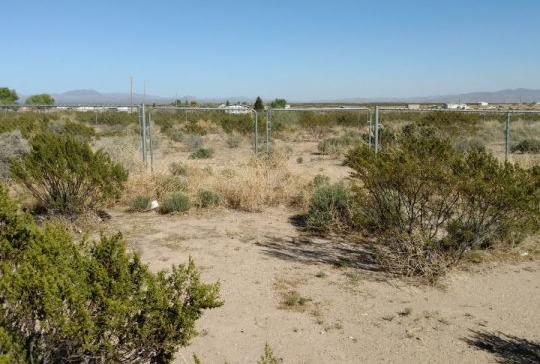 5723 S. Harmon Ln., Safford, AZ 85546 Photo 4