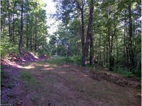 Home for sale: 9999 Camp Elliott Rd., Black Mountain, NC 28711