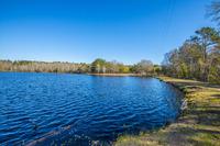 Home for sale: 580 Avant Lake, Walterboro, SC 29488
