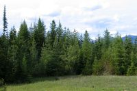 Home for sale: Nna 238 Acre River Rd., Clark Fork, ID 83811