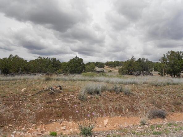 4650 W. Dillon Wash Rd., Prescott, AZ 86305 Photo 12