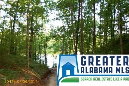 6 Rock Creek Co Rd. 4312, Wedowee, AL 36278 Photo 4