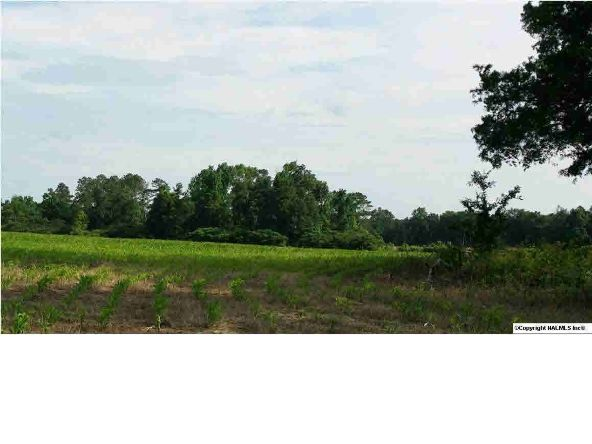 8 County Rd. 395, Section, AL 35771 Photo 2
