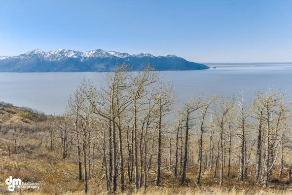 L8 Southpointe Bluff Dr., Anchorage, AK 99516 Photo 1