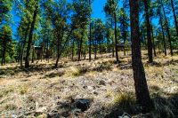 Home for sale: 103 Snowcap Dr., Ruidoso, NM 88345