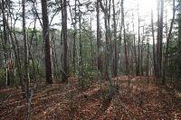 Home for sale: 196 Austin Mountain Rd., Copperhill, TN 37317