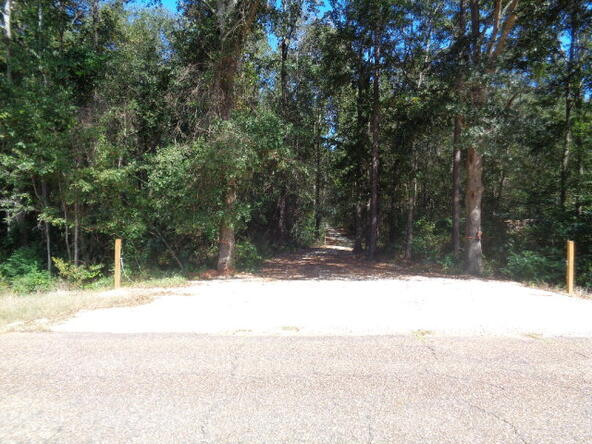 15.6+-Ac Johnny Murphy Rd., Dothan, AL 36301 Photo 4