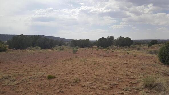 9517 E. Concho Hwy., Snowflake, AZ 85937 Photo 2