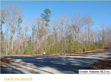 1 Blackberry Dr., Wedowee, AL 36278 Photo 15