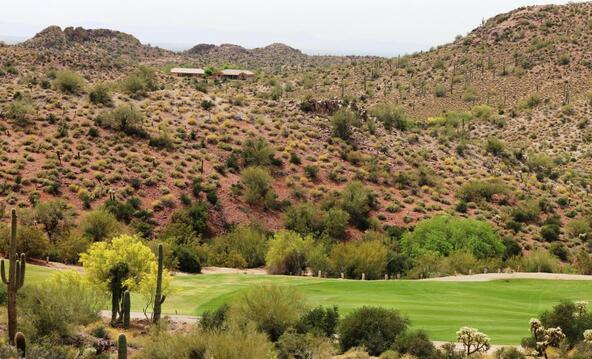 4963 S. Avenida Corazon de Oro --, Gold Canyon, AZ 85118 Photo 7