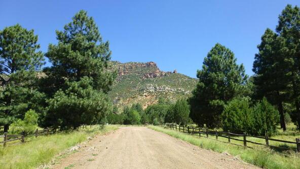 220 W. Zane Grey Cir., Christopher Creek, AZ 85541 Photo 25