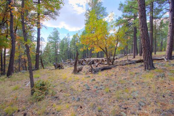 8100 W. Dk Ranch Rd., Flagstaff, AZ 86005 Photo 18
