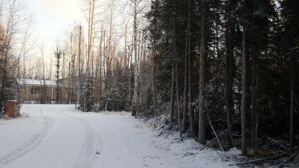 14613 E. Wilderness Rim, Willow, AK 99688 Photo 11