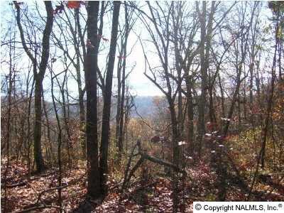 3 Mountain Heights Ridge Rd., Scottsboro, AL 35769 Photo 2