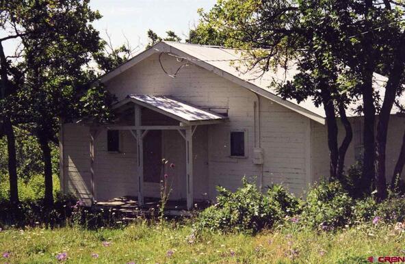 663 Usfs Rd. X Esmt, Pagosa Springs, CO 81147 Photo 14