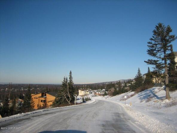 L14 B6 Manorwood Pointe Cir., Anchorage, AK 99516 Photo 7