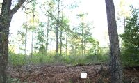 Home for sale: Lot # 2 Sweetwater, Moultrie, GA 31768