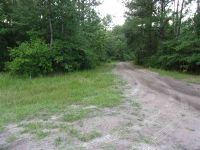 Home for sale: Vacant S.W. Hike Lake Rd., Madison, FL 32340