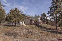 Home for sale: 450 Red Oaks Ln., Hesperus, CO 81326