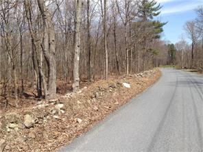 Toad Pasture Rd., Middletown, NY 10940 Photo 2