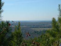 Home for sale: Moore Mtn Ln., Ellenboro, NC 28139