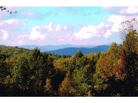 Home for sale: Tbd Dennis Cove Rd., Hampton, TN 37658