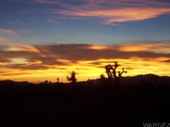 280 Diamond Back Rd., Yucca, AZ 86438 Photo 5